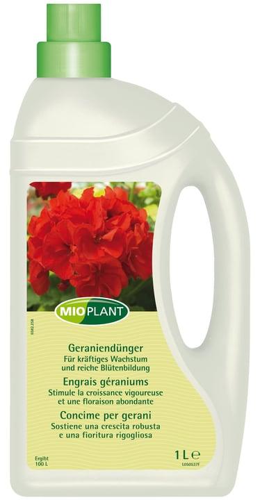 mioplant geraniend nger 1 l kaufen bei do it garden. Black Bedroom Furniture Sets. Home Design Ideas