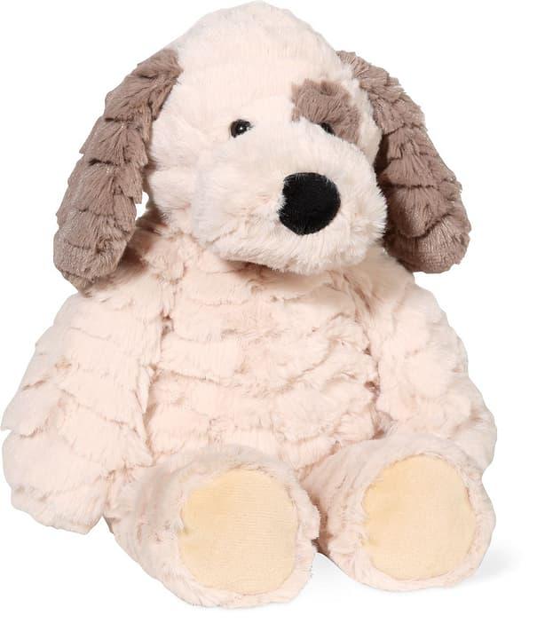 Hund beige, 23cm 746751400000 Bild Nr. 1