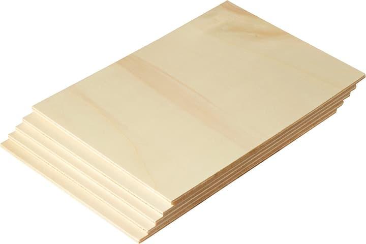 Pannello in compensato di pioppo DIN A4, 5 pz. 645035100000 Longueur L: 210.0 mm Dimensione A4 N. figura 1