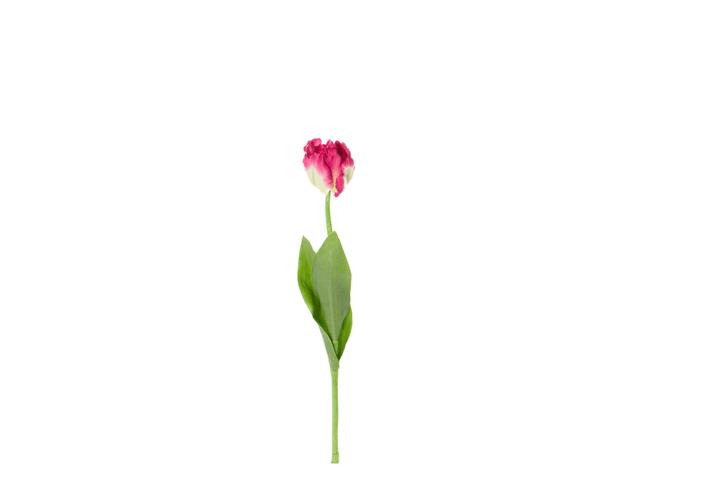 Tulipe artificielle Do it + Garden 657097600001 Colore Viola Taglio L: 62.0 cm N. figura 1