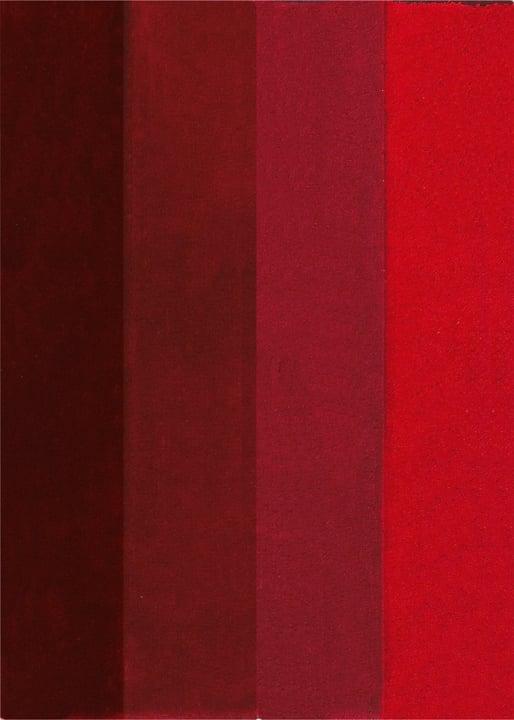 Tappetino da bagno Four spirella 675986800000 Colore Rosso Taglio 60x90cm N. figura 1