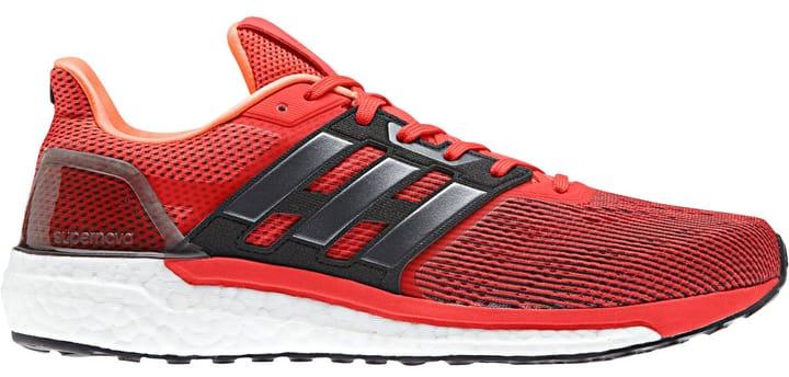 Supernova Chaussures de course pour homme Adidas 463207741033 Couleur rouge foncé Taille 41 Photo no. 1