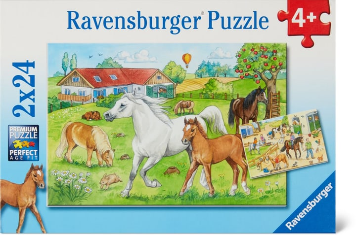 Au centre équestre Ravensburger Puzzle 748975700000 Photo no. 1