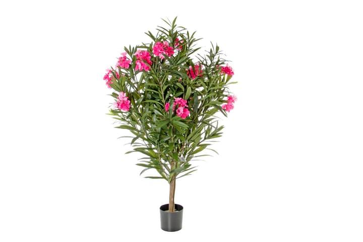Plante artificielle laurier-rose rose vif Do it + Garden 658958100000 N. figura 1