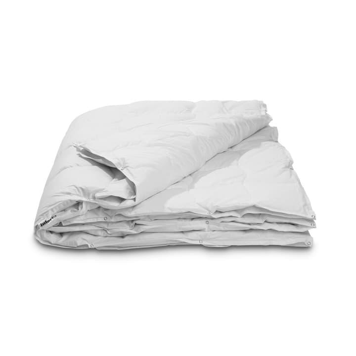 PREMIUM FOUR SEASONS Piumino da piume d'oca exclusiva per un piacere del sonno straordinario 376051900000 Colore Bianco Dimensioni L: 210.0 cm x L: 160.0 cm N. figura 1