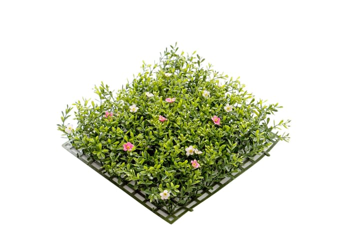 Fiori tappeto rosa Do it + Garden 659317900000 N. figura 1