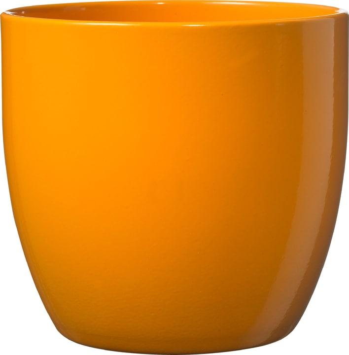 Cache-pot Basel Soendgen 655981900000 Taille ø: 10.0 cm x H: 8.0 cm Couleur Orange Photo no. 1