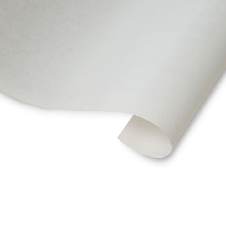 NATURALINE papier d'emballage 386125900000 Couleur Blanc Dimensions L: 20.0 m x P: 0.7 m Photo no. 1