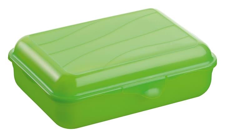 TAKE AWAY Box 1.25L M-Topline 702935000060 Farbe Grün Grösse B: 14.5 cm x H: 6.5 cm Bild Nr. 1
