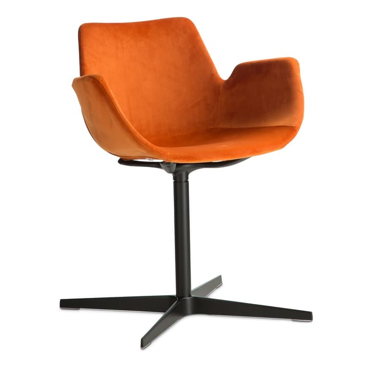 NITA Chaise avec accoudoirs 366120382802 Dimensions L: 47.0 cm x P: 54.0 cm x H: 73.0 cm Couleur Orange Photo no. 1