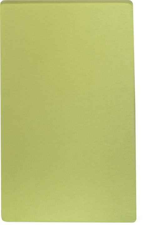 Drap-housse en jersey CARLOS 451033230361 Couleur Vert clair Dimensions L: 90.0 cm x P: 200.0 cm Photo no. 1