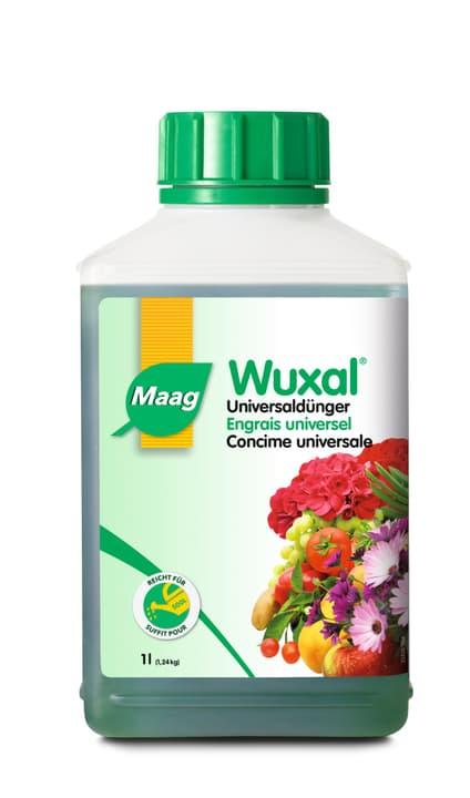 Wuxal Universaldünger, 1 l Maag 658218000000 Bild Nr. 1