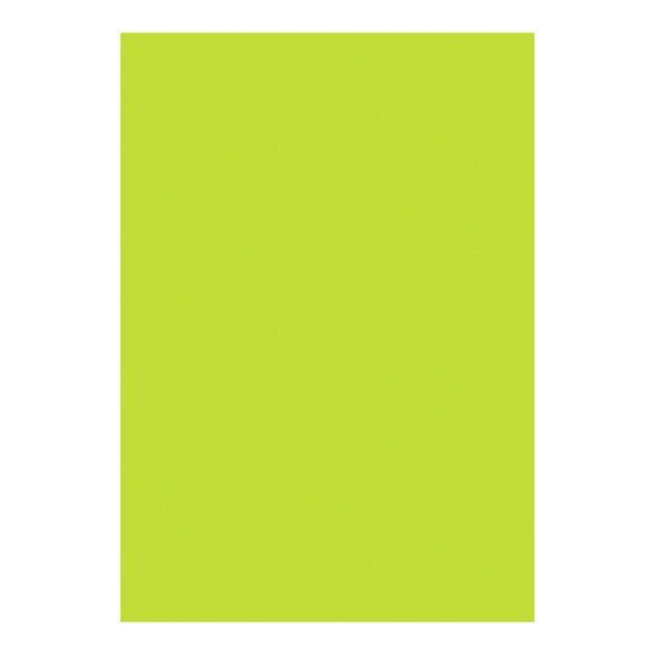 Image of I AM CREATIVE Blumenseide, lindgrün