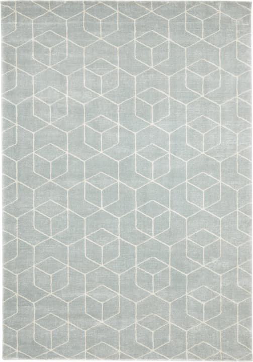 JUDITH Tapis 412009512041 Couleur bleu clair Dimensions L: 120.0 cm x P: 170.0 cm Photo no. 1