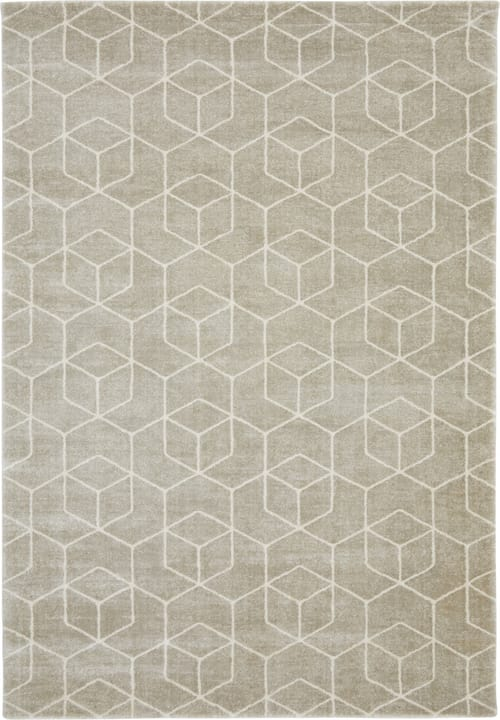 JUDITH Tapis 412009512081 Couleur gris clair Dimensions L: 120.0 cm x P: 170.0 cm Photo no. 1