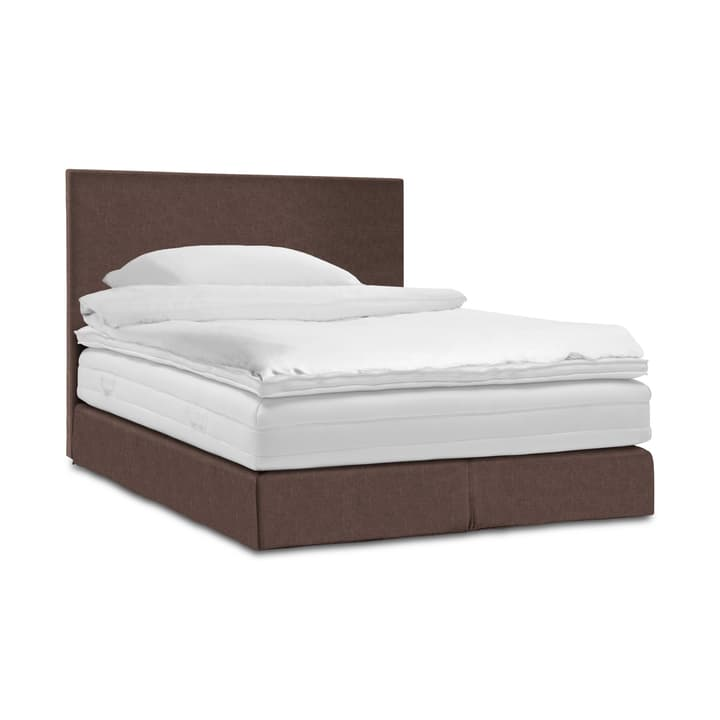 GRACE Lit Boxspring 364289100000 Dimensions L: 200.0 cm x P: 160.0 cm Couleur Chocolat Photo no. 1