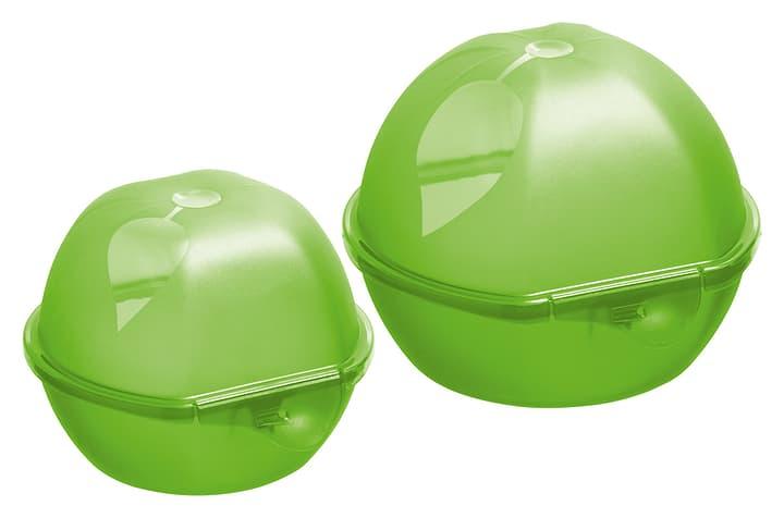 TAKE AWAY Contenitori per frutta M-Topline 703706600060 Colore Verde Dimensioni L: 11.0 cm x A: 9.5 cm N. figura 1