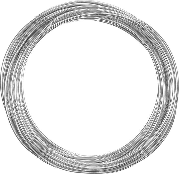 Fil en aluminium Aluminiumdraht 2.0 mm x 12.5 m Do it + Garden 604326300000 Photo no. 1