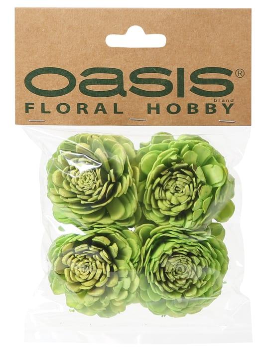 Künstliche Blütenköpfe Do it + Garden 656547600002 Farbe Hellgrün Bild Nr. 1