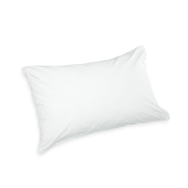 PERCAL Taie d'oreiller 376001628916 Couleur Blanc cassé Dimensions L: 70.0 cm x L: 50.0 cm Photo no. 1