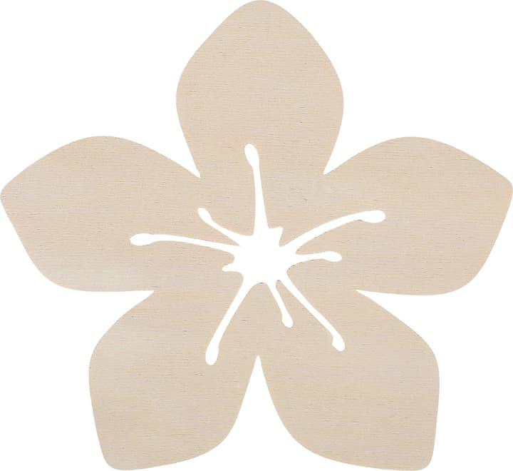 Fleur Aloa Grande Legna Creativa 664988000000 Photo no. 1