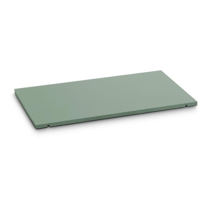 SEVEN Tablar 60cm 362019549102 Grösse B: 60.0 cm x T: 1.4 cm x H: 35.5 cm Farbe Grün Bild Nr. 1