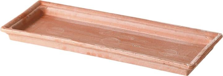 Soucoupe en argile Deroma 659152600000 Taille L: 53.0 cm x L: 22.0 cm x H: 4.1 cm Photo no. 1