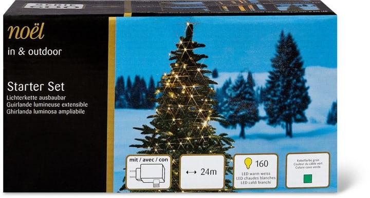 In-/Outdoor Lichterkette ausbaubar, 2400cm Noel by Ambiance 72255010000012 Bild Nr. 1