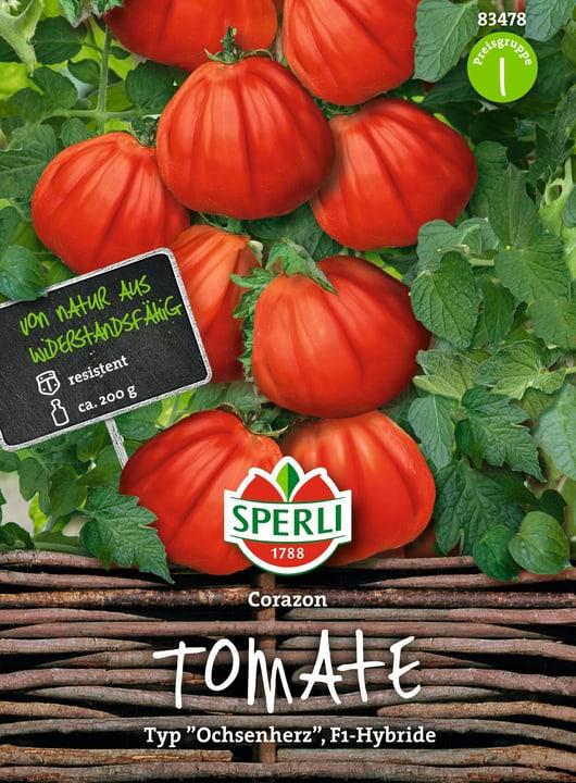 Tomate Corazon F1 Semences de legumes Sperli 650153700000 Photo no. 1