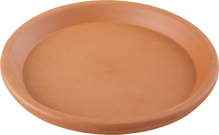 Sottovaso in terracotta Euganea 659535100000 Colore Terracotta Taglio ø: 31.0 cm x A: 4.0 cm N. figura 1
