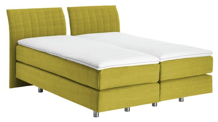 NAVIER Lit Boxspring 403483900000 Couleur Vert tilleul Dimensions L: 160.0 cm x P: 200.0 cm Photo no. 1