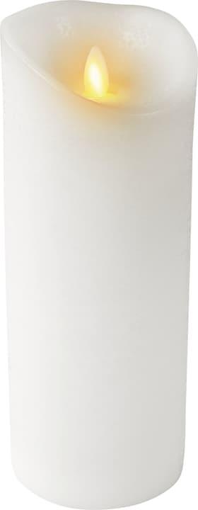 NORWIN Candela LED 440712560010 Colore Bianco Dimensioni A: 23.0 cm N. figura 1