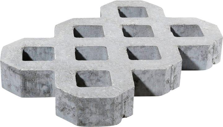 Grigliato erboso in pietra 60x40cm -  di 40 pezzi 647517000000 N. figura 1