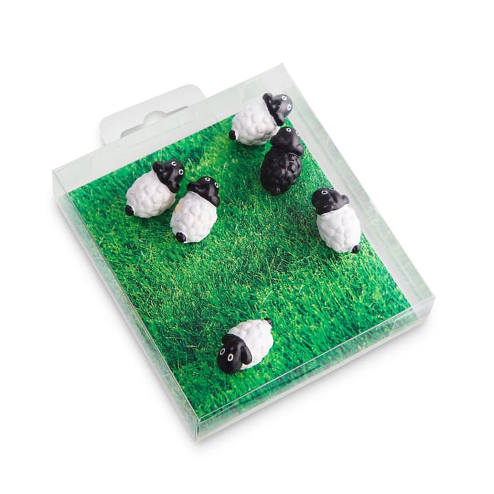 SHEEP Calamite 386122100000 N. figura 1