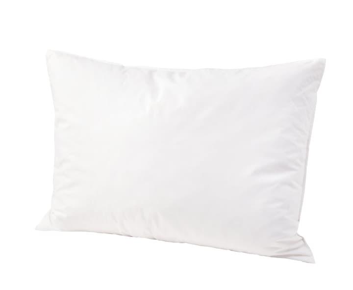 MEZZO soft Extra weiches Kopfkissen mit daunigen Federchen und Milbenschutz 451732810610 Farbe Weiss Grösse B: 65.0 cm x T: 65.0 cm Bild Nr. 1