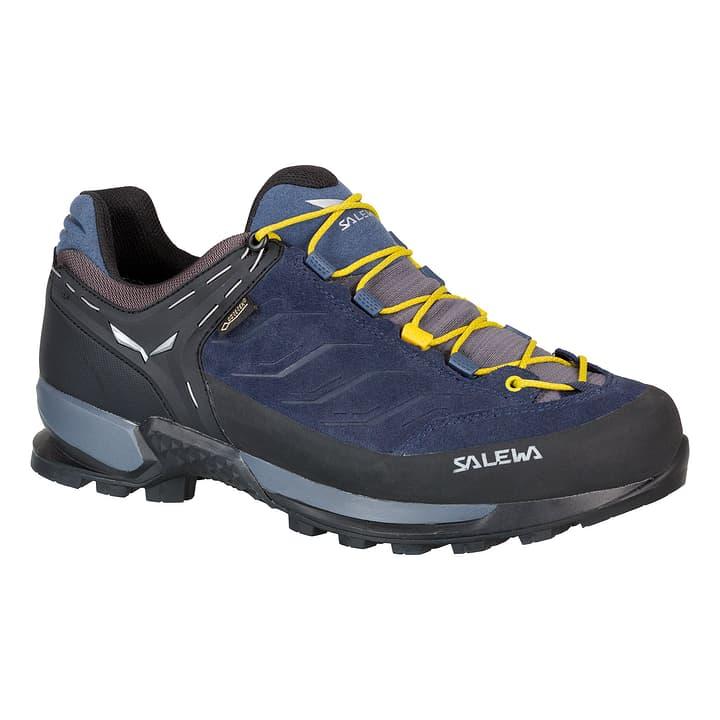 Mtn Trainer GTX Chaussures polyvalentes pour homme Salewa 462972046040 Couleur bleu Taille 46 Photo no. 1