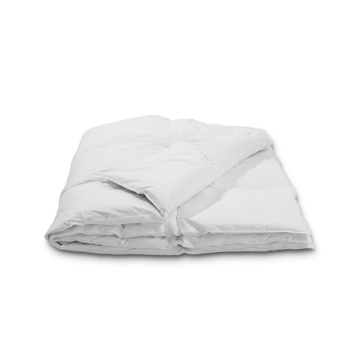 BASIC LIGHT Couette en duvet d'oie 376050100000 Couleur Blanc Dimensions L: 210.0 cm x L: 160.0 cm Photo no. 1