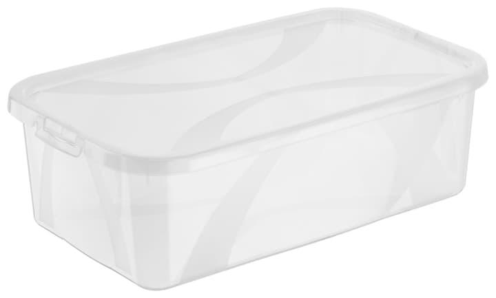 Arco Box 5L, transparent Rotho 603629700000 Grösse L: 34.0 cm x B: 20.2 cm x H: 10.6 cm Farbe Transparent Bild Nr. 1