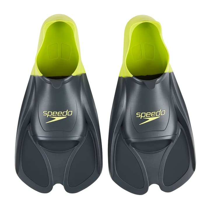 BioFuse Training Fin Palmes d'entraînement Speedo 464718137080 Couleur gris Taille 37 Photo no. 1