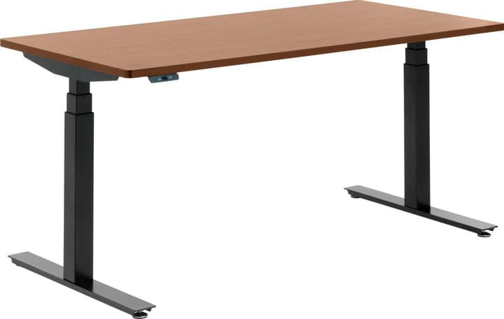 FLEXCUBE Bureau 401836300000 Dimensions L: 160.0 cm x P: 80.0 cm x H: 75.0 cm Couleur Chêne Photo no. 1