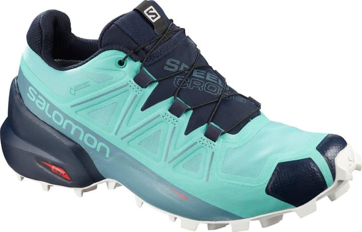 Speedcross 5 GTX Damen-Runningschuh Salomon 492848338041 Farbe Hellblau Grösse 38 Bild-Nr. 1