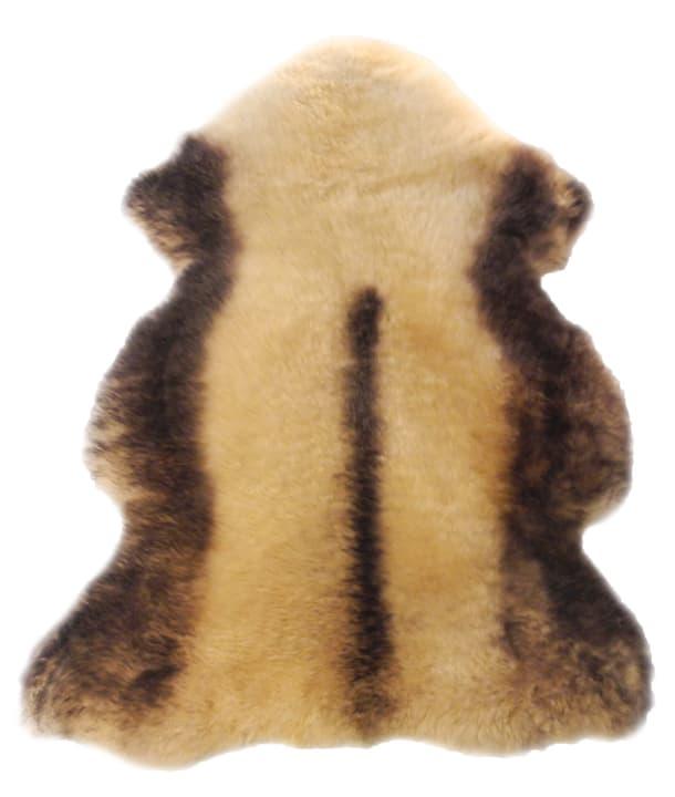 Pelle d'agnello Borregos marrone 620514000000 N. figura 1