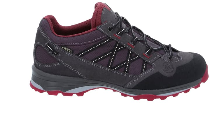 Belorado II Low GTX Chaussures polyvalentes pour femme Hanwag 462976238080 Couleur gris Taille 38 Photo no. 1