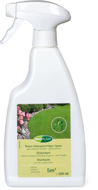 Rasen-Unkrautvertilger-Spray gegen Unkräuter im Rasen – gebrauchsfertig, 500 ml Mioplant 658409600000 Bild Nr. 1