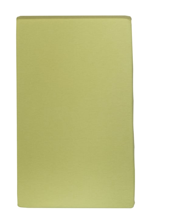 Drap-housse en jersey CARLOS 451033230661 Couleur Vert clair Dimensions L: 110.0 cm x P: 200.0 cm Photo no. 1