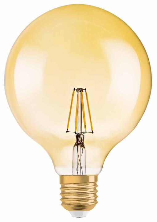 LED E27 51W Filament GLOBE golden Osram 421051100000 Bild Nr. 1