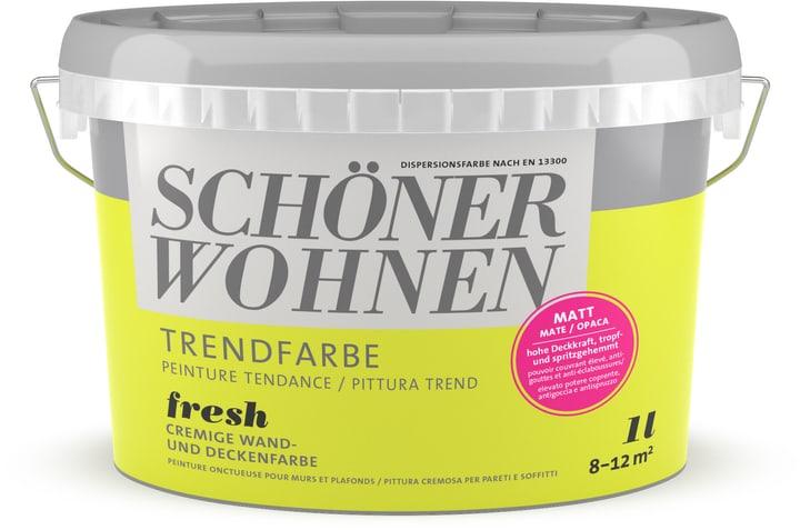 Couleur tendance mate Schöner Wohnen 660940900000 Couleur Fresh Contenu 1.0 l Photo no. 1