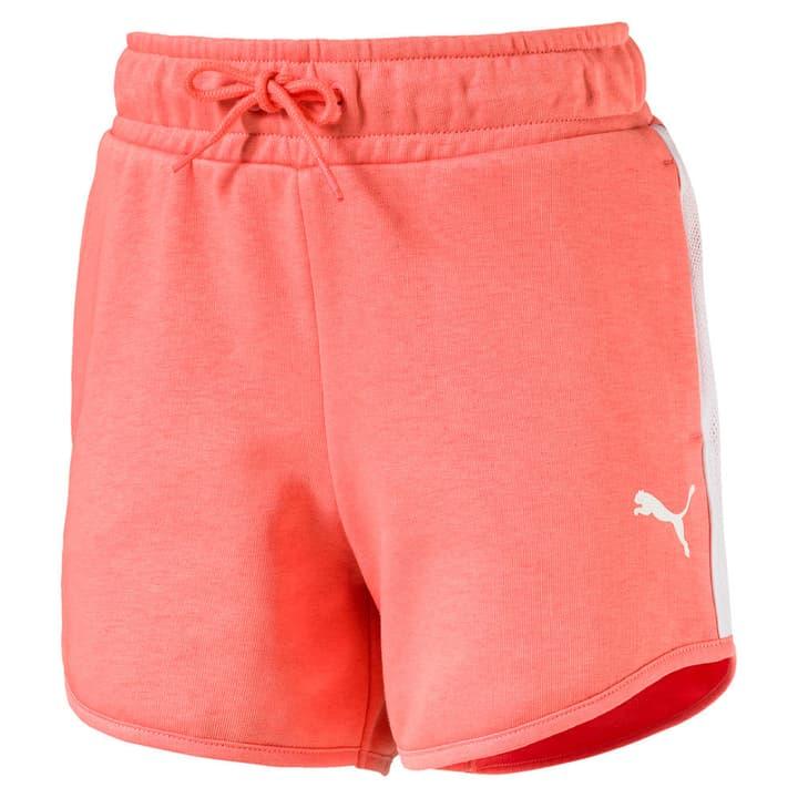 Style Shorts Short pour fille Puma 464555712838 Couleur rose Taille 128 Photo no. 1
