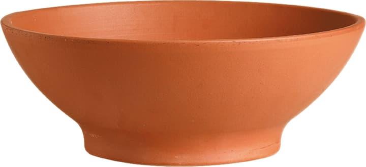 Ciotola per fiori Deroma 659439600000 Colore Marrone Taglio ø: 42.0 cm x A: 15.1 cm N. figura 1