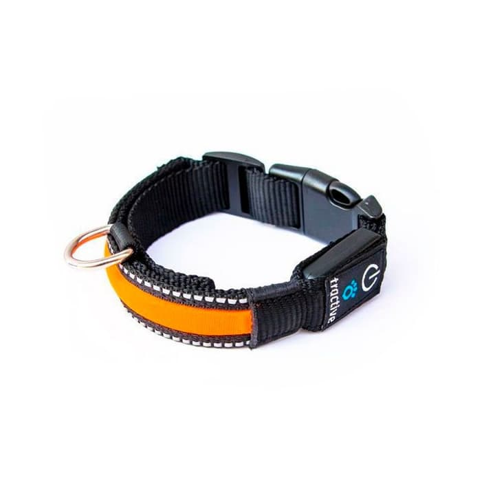 Tractive LED Dog Collar, medium, orange Tractive 785300127742 Bild Nr. 1